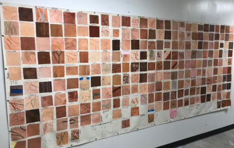 """Shades of Hope/Unity"" Art Project Celebrates the Diversity at PHS"
