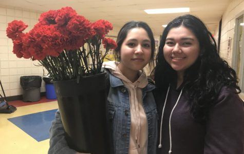 Art Club Selling Valentine's Day Carnations for $1