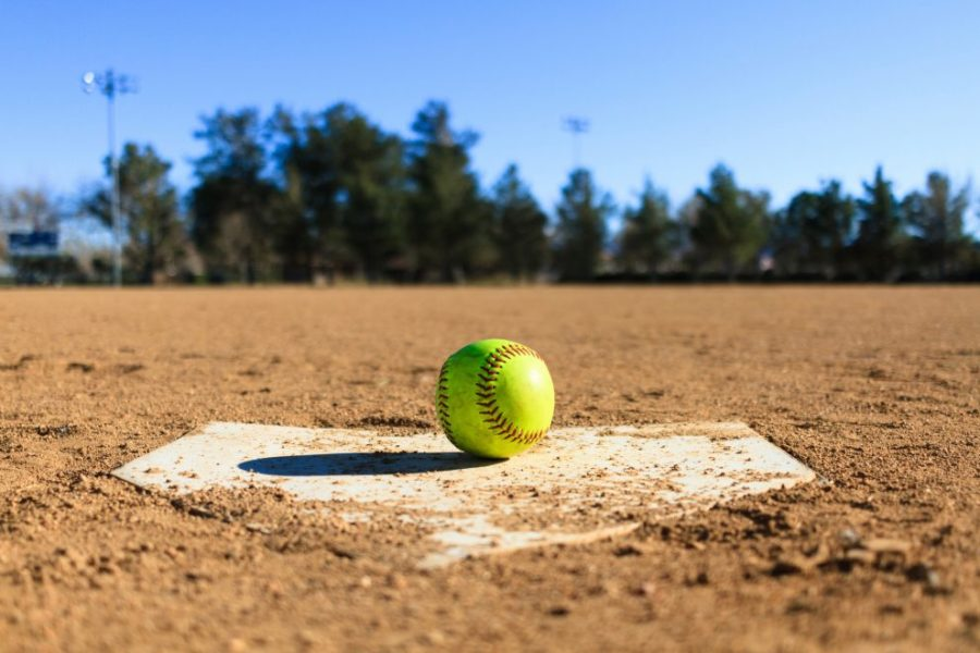 Softball Season 2019
